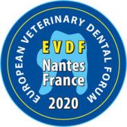 EVDF Nantes 2020